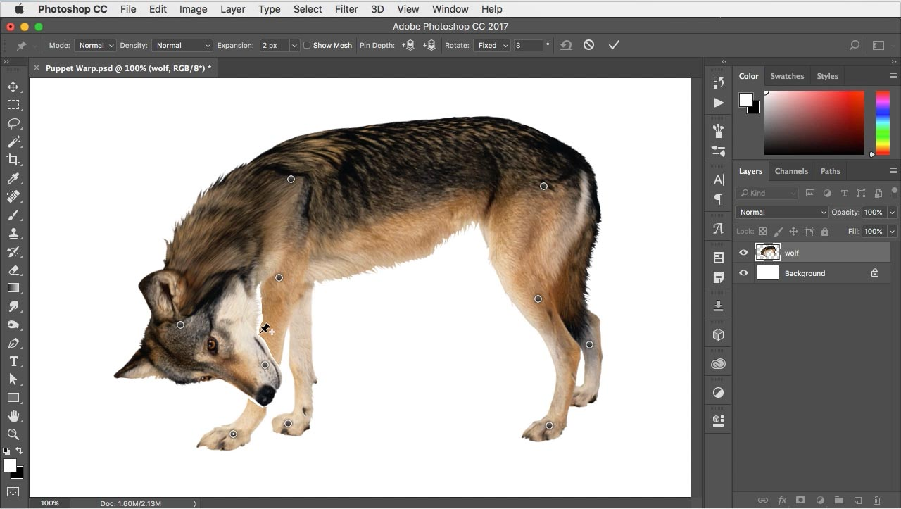 2 minute photoshop photoshop tutorials in just two minutes organic distortion with puppet warp baditri Image collections