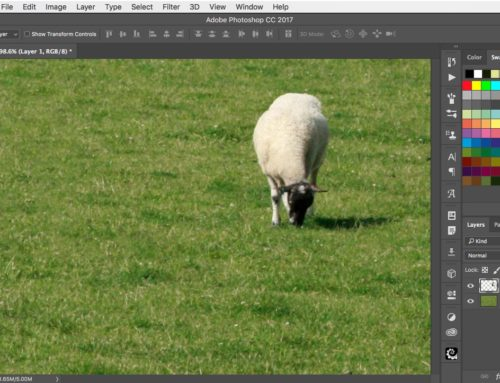 How to recompose an image in Photoshop